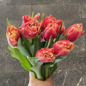 vday tulips small